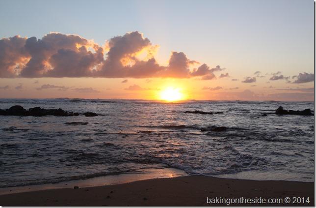 Hawaii2013 136